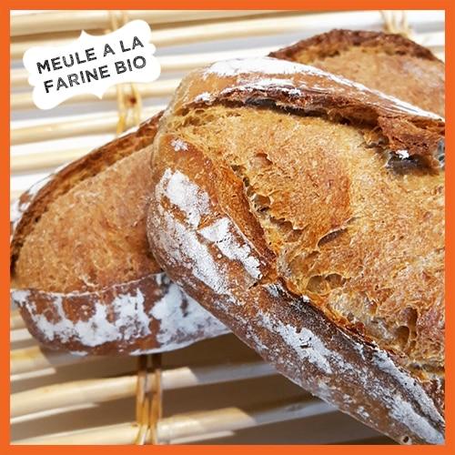 La nouvelle meule de pain à la farine BIO de Lozère.